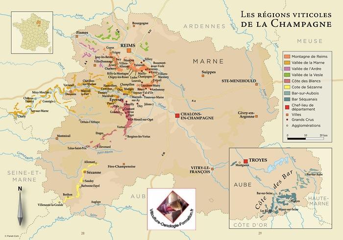 Photo gallery Wine tourism Les Suites Champenoises